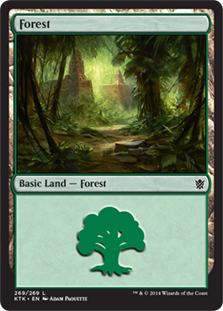 Forest - Khans of Tarkir