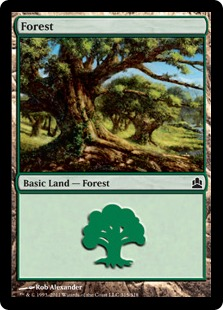 Forest - Magic: The Gathering-Commander